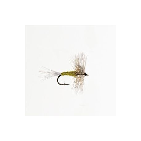 Mouche sèche blue wings
